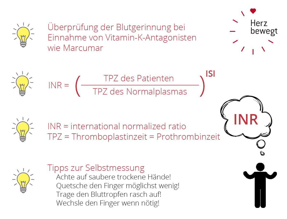Was ist der INR-Wert und was sagt er aus? I Herz bewegt informiert