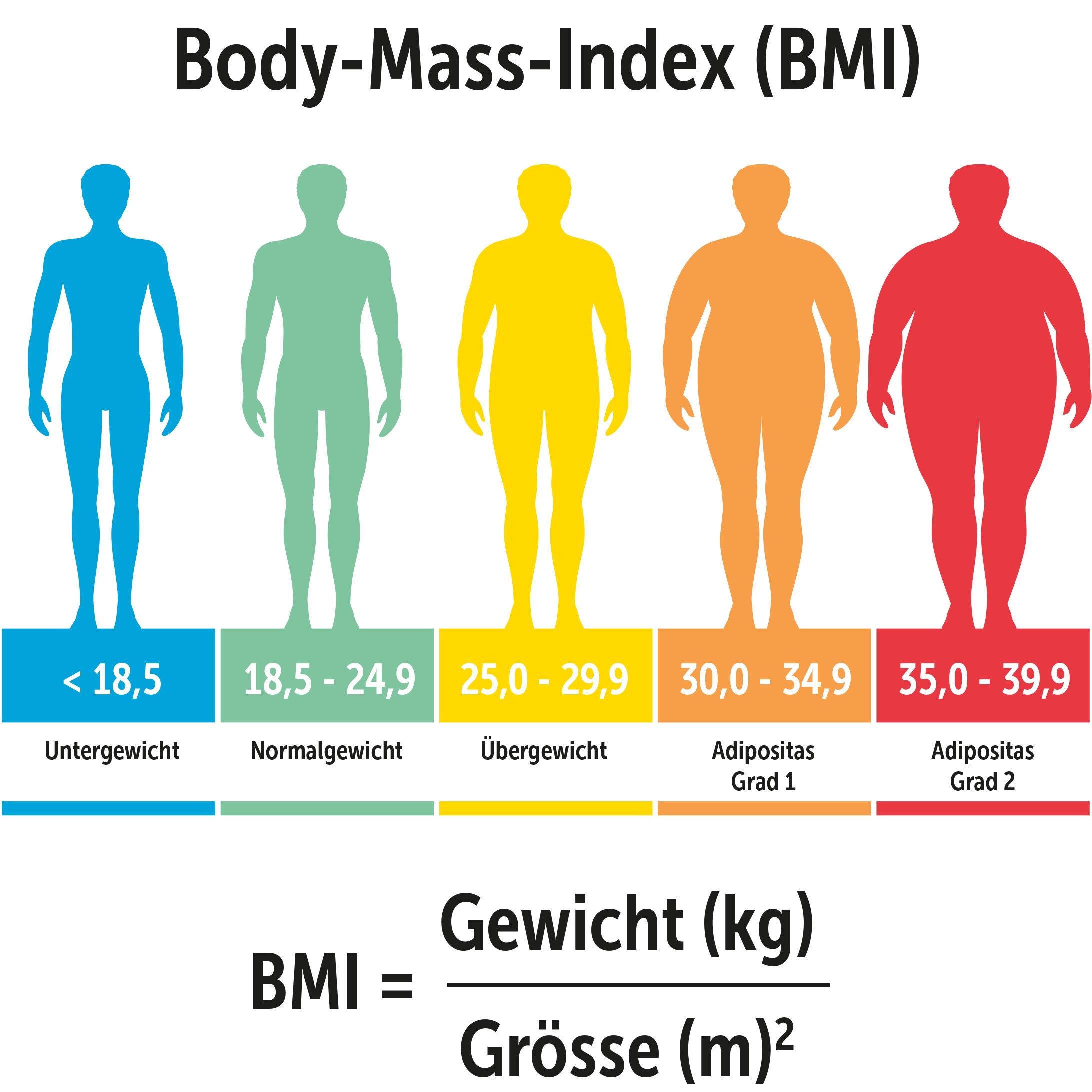 Was ist der Body Mass Index   Herz bewegt